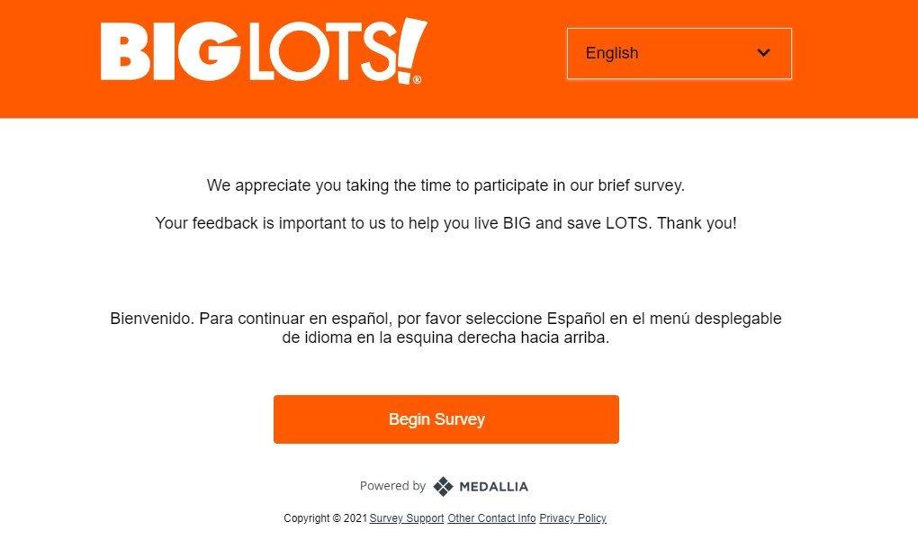 Biglots Survey