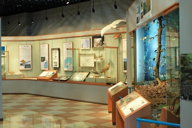 Museum Exhibit Entrance