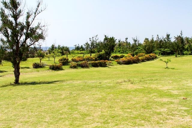 Shinri Beach from the campground