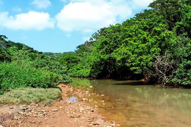 Shirase River East