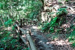 South Path