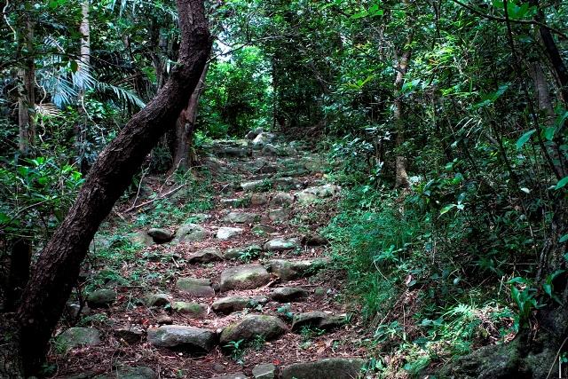 Suhara Path